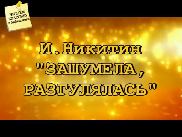 Изображение предпросмотра прочтения – БогданАфонин читает произведение «Радость» И.П.Токмаковой