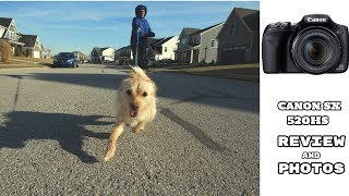Canon Sx520 HS | Review and Sample Photos