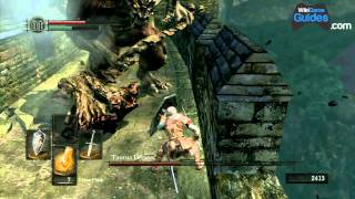 Dark Souls Walkthrough - Taurus Demon Boss Battle (Part 008) | WikiGameGuides