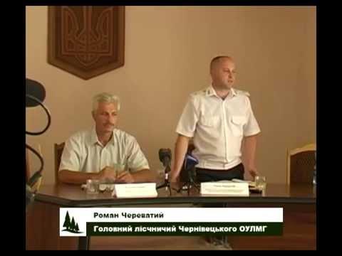 Лісова галузь Чернівецької області, 31.08.2015