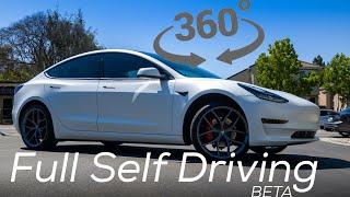 Tesla Full Self Driving in 360°