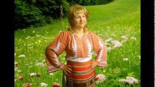 La fantanita din poarta-Magda Ionescu
