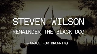 Watch Steven Wilson Remainder The Black Dog video