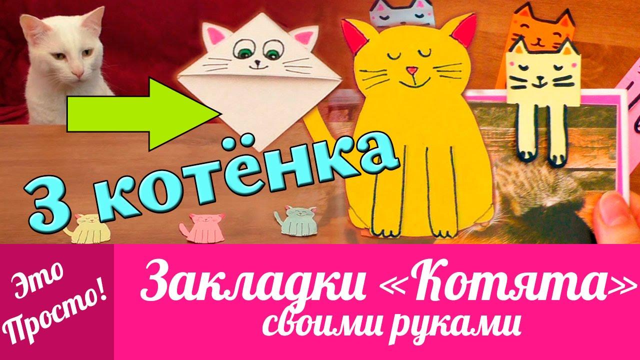 Кот закладка видео