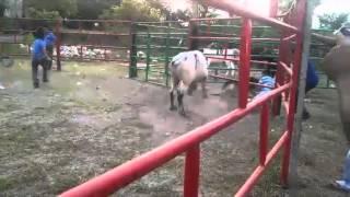 """Rancho.Los Fulminantes """"Dayron Garcia"""" Tetecala Morelos."""