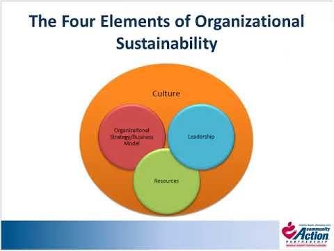 Organizational Sustainability  Executive Transition Management