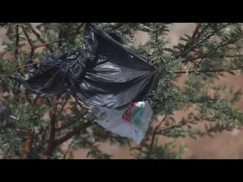 Bio-degradable plastic bags