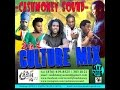 Download CASHMONEY SOUND - 2 IN 1 CULTURE MIX MAY 2016 MP3 song and Music Video