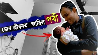 Introducing My Pori | New Member in My Life | Biggest Day Ever
