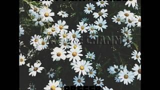 Shift feat.Lariss-Prefer (Karaoke)