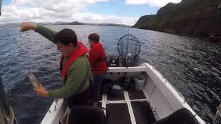 Pollack Fishing, Warrior 175