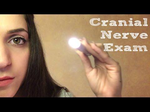 ◈ Cranial Nerve Exam ASMR ◈