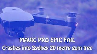How tough is the Mavic Pro? Drone crash into a massive Sydney gum tree