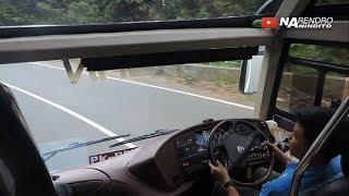 JOSS TENAN! Skill sopir bus muda usia 20an di jalur ekstrim Hutan Lindung Bengkulu