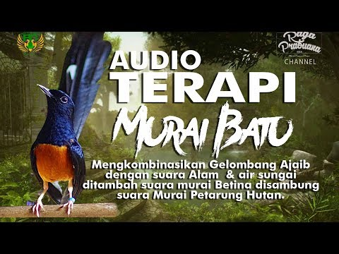 AUDIO MAGICAL THERAPY COURSE STONE MEMORABLE AND BODY PERFORMANCE