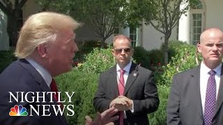 Trump's Denmark Remarks And Reversals On Background Checks, Tax Cuts | NBC Nightly News