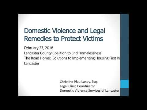 Domestic Violence and Legal Remedies to Protect Victims