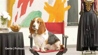 """Link to YouTube video """"Diary of Gertie the Actor 
