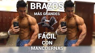 RUTINA DE BICEPS TRICEPS COMPLETA Facil EN CASA I Ismael Martinez