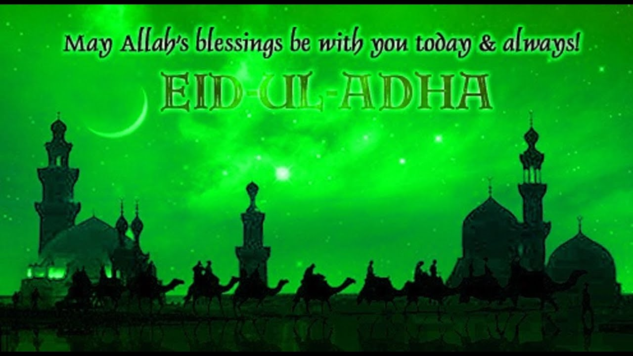 Happy eid al adha 2016 bakra eid wishes sms greetings quotes happy eid al adha 2016 bakra eid wishes sms greetings quotes sayings whatsapp video message 2 kristyandbryce Choice Image