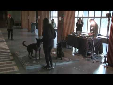 Candida Kandinskij - Dogsic - An Interspecies Performance