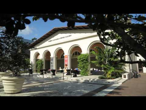 Discover The City of Coral Gables