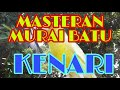Kenari Ngerol Sadis Audio Masteran Murai Batu  Mp3 - Mp4 Download