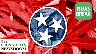 Tennessee Bill Solicits 2022 Voter Feedback On Cannabis Reform