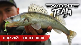 СУДАКИ С БЕРЕГА на силикон и тейл спиннеры Рыбалка на реке Тетерев Favorite Team