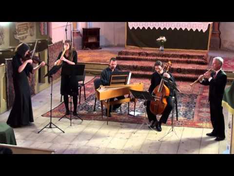 G.Ph. Telemann - Quartetto G-Dur (TWV 43:G6) | Musica Barcensis