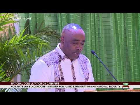 Hon. Rayburn Blackmoore addresses National Consultation on Cannabis