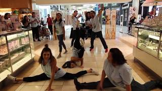 Shawn Mendes/Macy's Promotional Flash Mob (Fresno, CA)