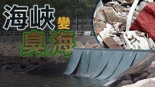 東方日報A1:荃灣海濱污染10載 環保署知錯唔改