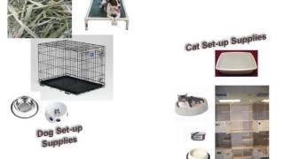 Spring 2013 Petsmart Coliseum Training For Volunteers