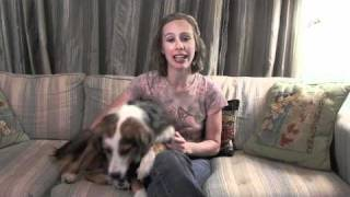 Dog Training Tip #2 On Training Your Dog To Dance