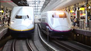 Shinkansen at Tokyo Station (by DSLR movie)