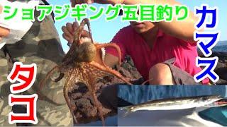 #1 ショアジギングで5種目釣れた!? thumbnail