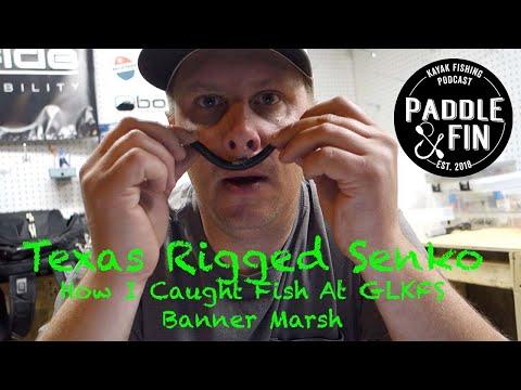 Texas Rigged Senko- How I Caught Fish At GLKFS Banner Marsh
