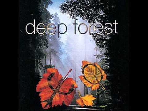 forest hymn.wmv