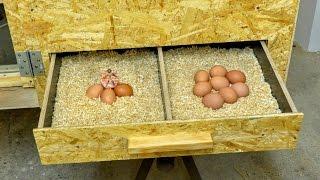 DIY Hen house #2/3 Building