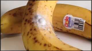 Deadly spiders in your bananas!!!
