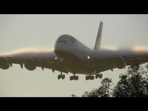 Crack of Dawn *HEAVY* Arrivals at London Heathrow Airport - Incl Finnair A350