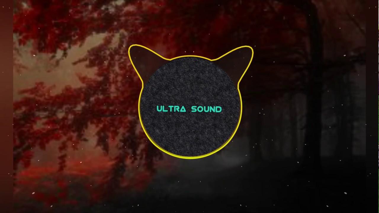 Download Disfigure blank,( Ultra sound remix )
