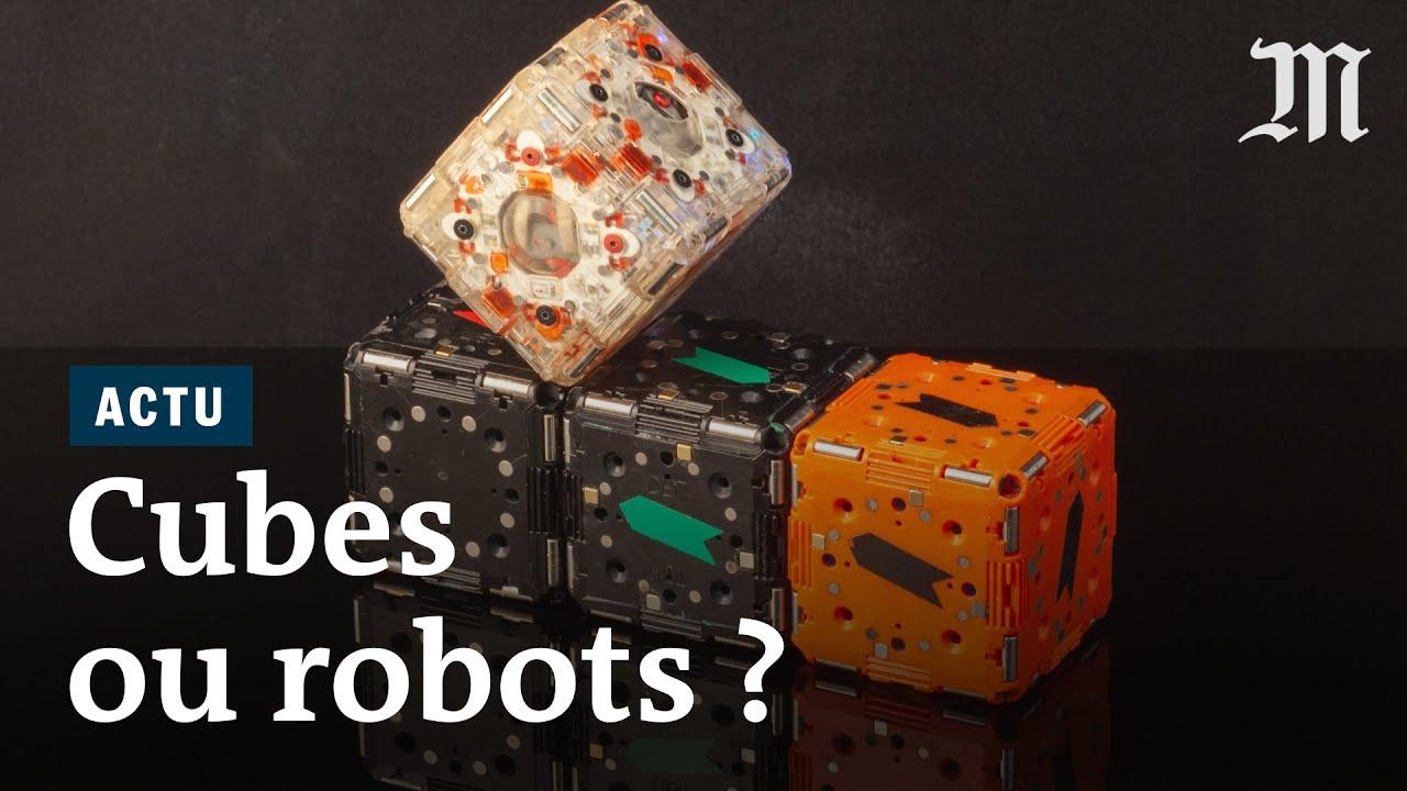 Pourquoi ces robots-cubes passionnent les ingénieurs de MIT image