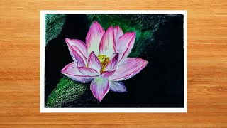 Illustration of Lotus with Color Pencils and Ink