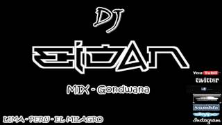 MIX Gondwana Remix 2014