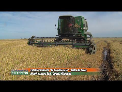 Rafael Giorgio - Productor Agropecuario - Visita a Establecimiento La Providencia