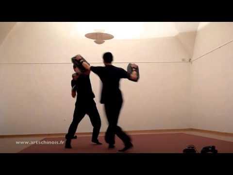 Entra Nement D 39 Arts Martiaux Combat Mma K1 Sanda Kick