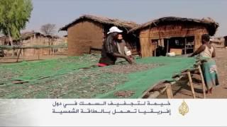 بيوت زجاجية لتجفيف الأسماك في ملاوي