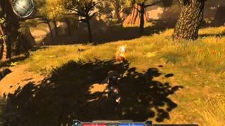 Divinity II (Gameplay)